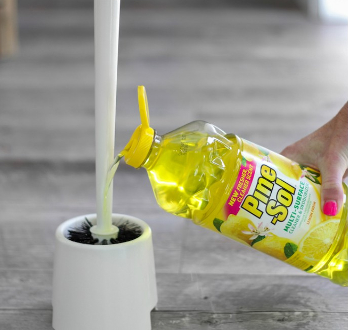 keep your toilet brush clean