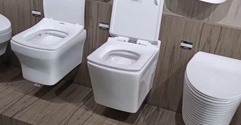Some Features You Might Find in Toilet Seats